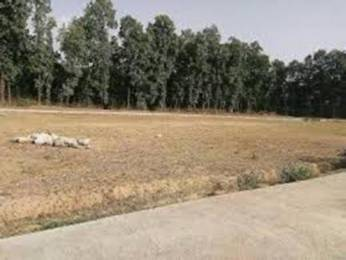 1500 sqft, Plot in Builder Project Kanke Road, Ranchi at Rs. 8.7500 Lacs