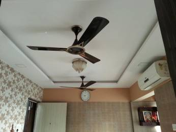 1000 sqft, 2 bhk Apartment in Builder Project Sector 17 Ulwe, Mumbai at Rs. 8500