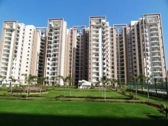 1350 sqft, 3 bhk BuilderFloor in Builder 3 bhk motiya city Ambala Chandigarh Expressway, Zirakpur at Rs. 23000