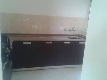 1814 sqft, 3 bhk Apartment in Satya The Hermitage Sector 103, Gurgaon at Rs. 15000