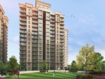 950 sqft, 2 bhk Apartment in Signature The Serenas Sector 36 Sohna, Gurgaon at Rs. 19.5471 Lacs