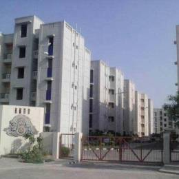 440 sqft, 1 bhk Apartment in DDA Flats Sector 23 Sector 23 Dwarka, Delhi at Rs. 22.0000 Lacs