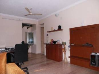 1730 sqft, 3 bhk Apartment in Builder Private Tower Sector 18 Palm Beach Rd Navi Mumbai Sanpada, Mumbai at Rs. 60000