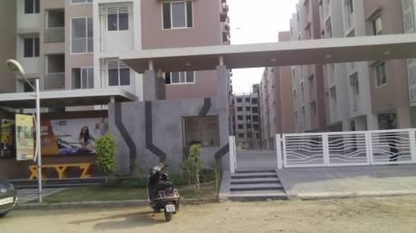 1143 sqft, 2 bhk Apartment in Swagat Blossom Sargaasan, Gandhinagar at Rs. 37.0000 Lacs