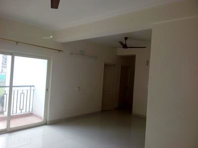 1950 sqft, 4 bhk BuilderFloor in Builder Project Sector 41 Block D Road, Noida at Rs. 35000