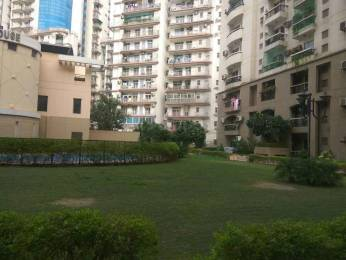 1100 sqft, 2 bhk Apartment in Assotech Windsor Greens Apartment Sector 50, Noida at Rs. 65.0000 Lacs