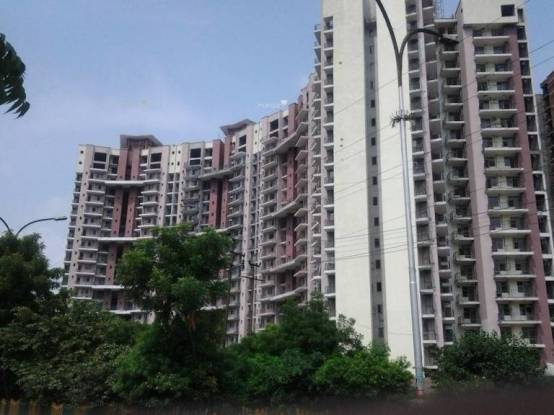 1660 sqft, 3 bhk Apartment in Amrapali Pan Oasis Sector 70, Noida at Rs. 80.0000 Lacs