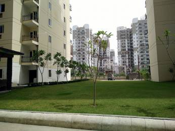 1700 sqft, 3 bhk Apartment in Gardenia Gateway Sector 75, Noida at Rs. 15000