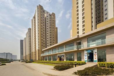 1660 sqft, 3 bhk Apartment in Paras Tierea Sector 137, Noida at Rs. 68.0000 Lacs