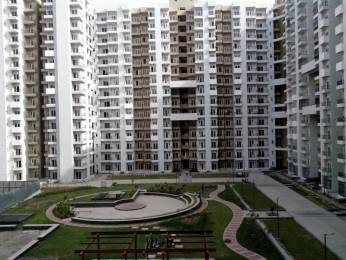 1075 sqft, 2 bhk Apartment in Ajnara Homes121 Sector 121, Noida at Rs. 13000