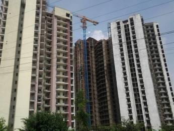 1172 sqft, 2 bhk Apartment in PAN Realtors Pvt. Ltd. Amrapali PAN Oasis Apartments Sector 70, Noida at Rs. 15000