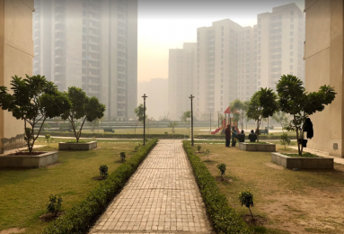 1350 sqft, 3 bhk Apartment in Jaypee Kosmos Sector 134, Noida at Rs. 10000