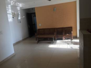 1350 sqft, 2 bhk Apartment in Jaypee The Pavilion Court Sector 128, Noida at Rs. 25000