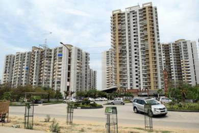 945 sqft, 2 bhk Apartment in Ajnara Homes121 Sector 121, Noida at Rs. 20000