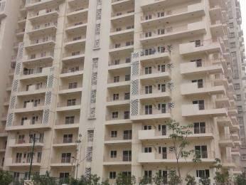 1250 sqft, 2 bhk Apartment in Mahagun Moderne Sector 78, Noida at Rs. 75.0000 Lacs