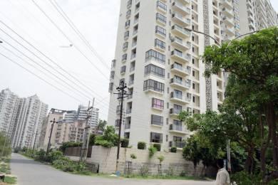 2250 sqft, 3 bhk Apartment in TGB Meghdutam Sector 50, Noida at Rs. 42000