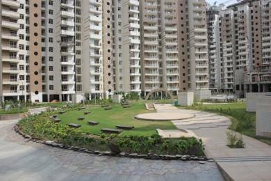 1082 sqft, 2 bhk Apartment in Supertech Ecociti Sector 137, Noida at Rs. 22000