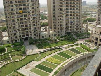 1850 sqft, 3 bhk Apartment in ATS Paradiso CHI 4, Greater Noida at Rs. 17000