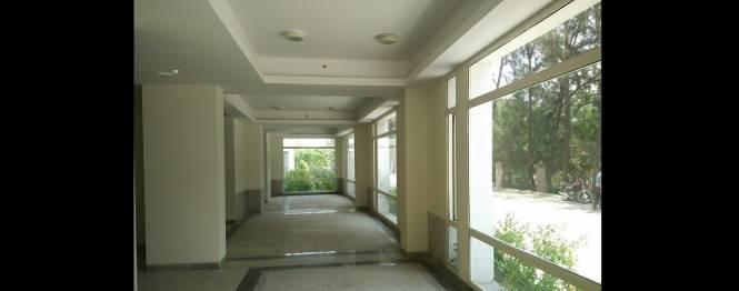 2421 sqft, 3 bhk BuilderFloor in Builder Raksha Enclave Sector Omega -1 Gr Noida, Greater Noida at Rs. 19000