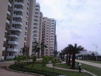 1700 sqft, 3 bhk Apartment in Omaxe Palm Greens MU Greater Noida, Greater Noida at Rs. 65.0000 Lacs