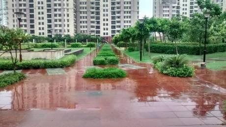 1695 sqft, 3 bhk Apartment in Unitech Horizon PI, Greater Noida at Rs. 14000