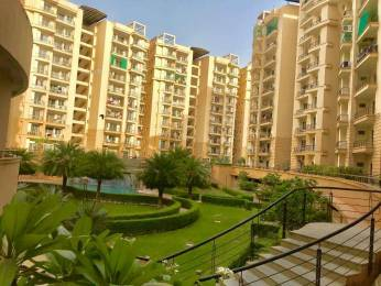 1498 sqft, 3 bhk Apartment in Mahima Panorama Jagatpura, Jaipur at Rs. 20000