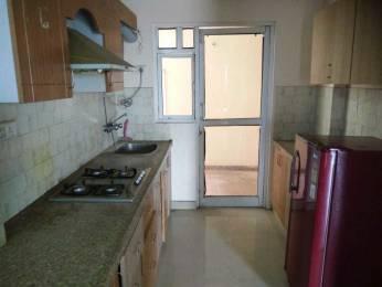 1086 sqft, 2 bhk Apartment in Mahima Panorama Jagatpura, Jaipur at Rs. 13000