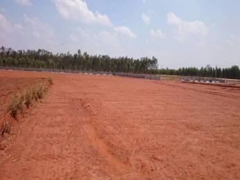 810 sqft, Plot in Builder Plot for sale in Zirakpur Patiala Road, Zirakpur at Rs. 15.8400 Lacs