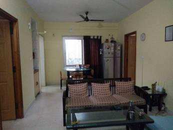 993 sqft, 2 bhk Apartment in Sobha Windfall Jakkur, Bangalore at Rs. 49.5000 Lacs