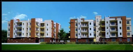 1685 sqft, 3 bhk Apartment in Builder Brij Bhumi Kanke Road, Ranchi at Rs. 71.0000 Lacs