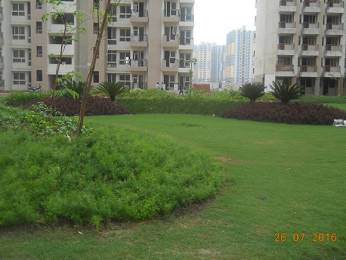 1340 sqft, 3 bhk Apartment in Mapsko Paradise Sector 83, Gurgaon at Rs. 63.0000 Lacs