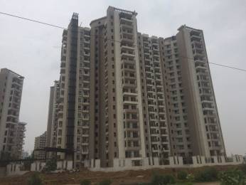 1790 sqft, 3 bhk Apartment in Mapsko Royale Ville Sector 82, Gurgaon at Rs. 89.0000 Lacs