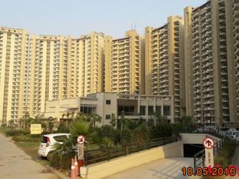 1690 sqft, 3 bhk Apartment in Mapsko Casa Bella Sector 82, Gurgaon at Rs. 82.0000 Lacs