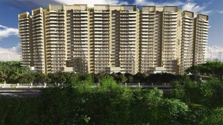 2050 sqft, 3 bhk Apartment in Bestech Park View Altura Sector 79, Gurgaon at Rs. 1.3000 Cr
