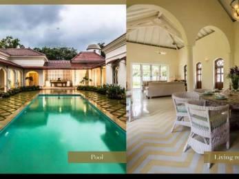12917 sqft, 4 bhk Villa in Builder Project Morjim, Goa at Rs. 16.0000 Cr