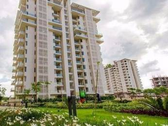 2550 sqft, 4 bhk Apartment in Shalimar Gallant Aliganj, Lucknow at Rs. 50000