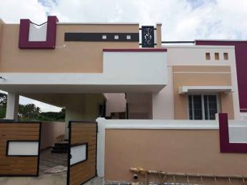 1197 sqft, 2 bhk IndependentHouse in Builder Project Vadavalli, Coimbatore at Rs. 38.0000 Lacs