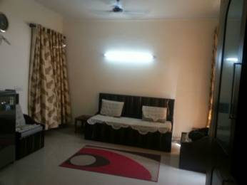 1700 sqft, 3 bhk Apartment in Reputed Navin Residency Sector 5 Dwarka, Delhi at Rs. 1.3100 Cr