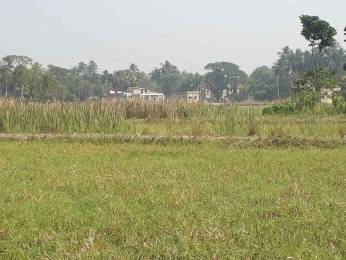 1440 sqft, Plot in Builder Bristi Garden at Amtala Opposite Bishnupur Police Station Amtala, Kolkata at Rs. 5.0000 Lacs