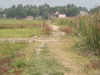 1440 sqft, Plot in Builder Amtala Bristi Garden Opposite Bishnupur Police Station Amtala, Kolkata at Rs. 7.0000 Lacs