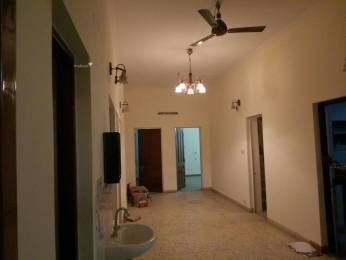 2500 sqft, 3 bhk BuilderFloor in Builder Project Kailash Colony, Delhi at Rs. 55000
