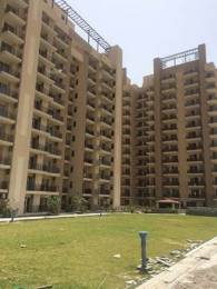 1450 sqft, 2 bhk Apartment in Satya The Hermitage Sector 103, Gurgaon at Rs. 75.0000 Lacs