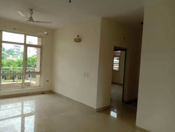 1640 sqft, 3 bhk Apartment in Omaxe Hills 2 Sector 43, Faridabad at Rs. 98.0000 Lacs