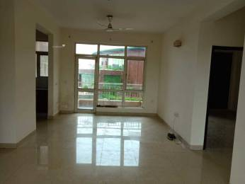1644 sqft, 3 bhk Apartment in Omaxe Hills Sector 43, Faridabad at Rs. 97.0000 Lacs