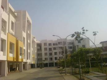 1760 sqft, 3 bhk Apartment in  Tranquility Phase I Manjari, Pune at Rs. 60.0000 Lacs