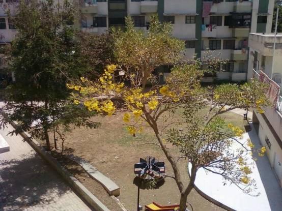 726 sqft, 2 bhk Apartment in Naiknavare Swapnapurti Hadapsar, Pune at Rs. 32.0000 Lacs