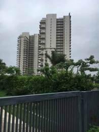 1784 sqft, 3 bhk Apartment in Puri Diplomatic Greens Sector 110A, Gurgaon at Rs. 26000