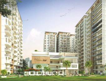 3800 sqft, 4 bhk Apartment in DSR Fortune Prime Madhapur, Hyderabad at Rs. 2.4800 Cr