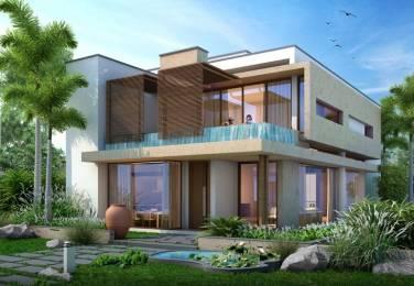 6350 sqft, 4 bhk Villa in Northstar Hillside Gandipet, Hyderabad at Rs. 3.7624 Cr
