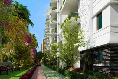 2043 sqft, 3 bhk Apartment in SVC Tree Walk Kondapur, Hyderabad at Rs. 98.0640 Lacs